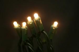 LED 50 Light 5mm - Warm White