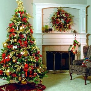 christmas-traditional-lighting-from-holiday-bright-lights-omaha