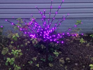 Decorate landscape with LED Lightburst - Purple or Orange